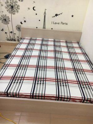 mẫu giường ngủ đẹp (12)